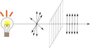 Schematic of polarized light