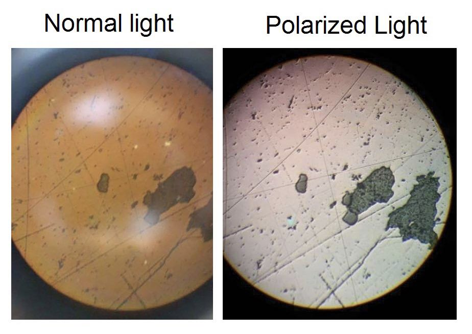 The different with normal light and polarized light